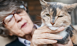 older woman petting a speckled cat
